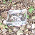 "Kosta Boda Crystal Dish - Days of the Week - ""Sunday"""