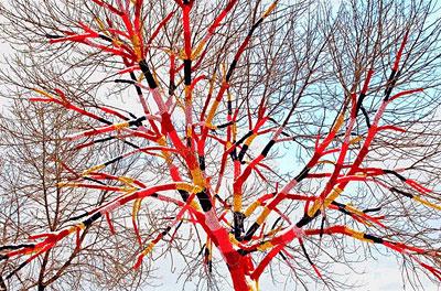 Dressed_tree